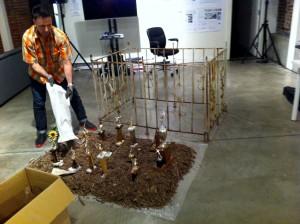 """Vaisbord installs """"Sim's Garden"""" in InterUrban Gallery, Vancouver Canada May 2015"""